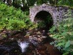 Explore hidden bridges and waterfalls