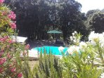 Gîte avec vue piscine