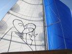 Main Sail and gennaker.