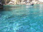 Hire a boat in the Tremiti and go snorkeling in the clear blue water