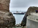 Take a day trip to Lundy Island from Ilfracombe or Bideford on board  on MS Oldenberg