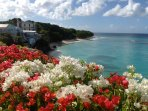 View from Roof garden  and paradise beach with Bougainvillea in full bloom