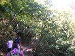 Trekking along the river at Dimosaris gorge in southern Evia