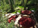 Spectacular outdoor living area with large deck, BBQ, stream
