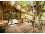 Treehouse interior and deck