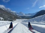 The cross-country ski trails are sublime.