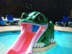 Frog pool at Cabana Club