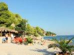 Bar and restaurant on the beach