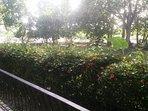 Vista desde terraza-balcón