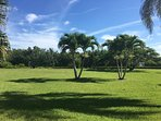 Professionally manicured & maintained landscapes at Blue Crab Key