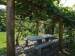 Romantic garden