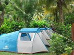 Big Banana Campground 'CALYPSO '