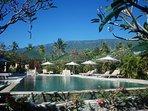 Villa Estate Main Pool