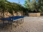 Table Tennis round the Back