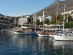Take a stroll along the harbour and decide which boat trip you are going to enjoy.