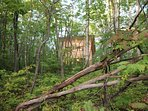 Brand new, bright and comfortable one-bedroom cottage in the woods.