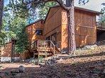 Building,Cabin,Shelter,Fir,Tree