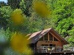 Blockhaus im Schwarzwald mit schöner Holzterrasse