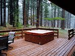 Private Back Deck - Hot Tub - Dry Sauna - Outdoor Entertaining