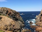 View near Twillingate 15 min from Salt Harbor