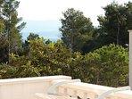 A1(2): terrace view