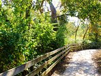 Starved Rock State Park Trail