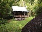 Sassafras Rock Cabin in the summer time.