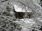 Our snows are more common in Feb & March.  A beautiful quiet time to be in Sassafras Rock