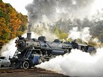 Special steam train