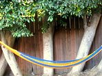 Relax in an imported Mexican Hammock!