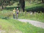 Locations de vélos pour les clients des gîtes