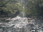 Moffat Water runs through the estate