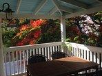 Shady upstairs back Porch