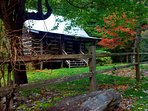 As summer turns to fall in Walnut Falls Cabin ... sitting on the creek bank.