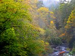 Cullasaja River Gorge in the fall ... only minutes from the cabin.