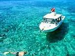 Go snorkeling or diving at some of the best reefs in the Florida Keys near Key Colony Beach.