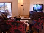 2 Big Screen TVs with Cable TV, Blu Ray Player, Netflix, and a Video Library