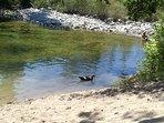 Rivière à 10mn avec ses piscines naturelles