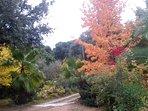 Le jardin parc