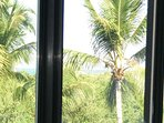 Beautiful Oceanview, from our Window and Balcony surrounded by mature Palms