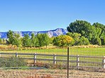 1BR Grand Junction Apartment w/ Mountain Views!