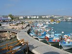 explore boat trips at Ayia Napa's picturesque harbour