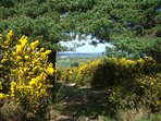 Visit Ashdown Forest, home to Winnie the Pooh. 45 mins drive from Lamb's Knees