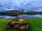 Stan the Stag lights up at night in front of Loch Earn at Briar Cottages Lochearnhead