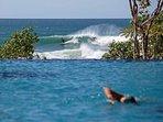 Σερφάρετε στο Break Διάσημοι Μικρή Χαβάη