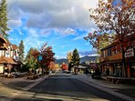 Downtown Village (Walking Distance)