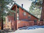 Building,Cabin,Shelter,Cottage,Vine