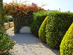 garden and nature around the villa