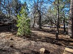 Large Lot, Walk To National Forest