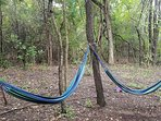 two of the three hammocks... very near the Creek Treehouse.  For more photos search the web.